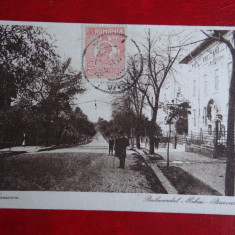 Carte postala - Vedere - Craiova - Bulevardul Mihai Bravul