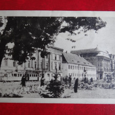 Carte postala - Vedere - Timisoara - Carte Postala Banat dupa 1918, Circulata, Printata