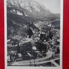 Carte postala - Vedere - Sinaia - Carte Postala Banat dupa 1918, Circulata, Printata