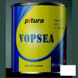 Vopsea lucioasa gri deschis Pitura - 0.75 L