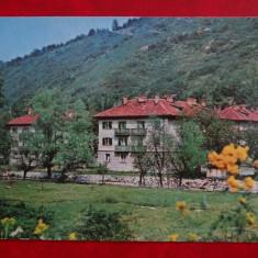 SEPT15-Vedere/Carte postala-Orasul Nucet-Bihor-circulata - Carte Postala Banat dupa 1918, Printata