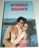 Asalt tandru - Sandra Brown