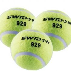 Mingi tenis SPORTMANN 3/set - Racheta tenis de camp