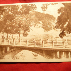 Ilustrata Caciulata-Calimanesti - Podul peste Olt -inceputul anilor '50