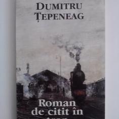 Roman de citit in tren - Dumitru Tepeneag / R4P5F