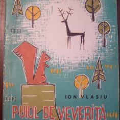 Puiul de veverita - Ion Vlasiu. Ilustratii Popovici Constantin (1967)