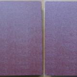 Tudor Arghezi, Ochii maicii Domnului, 1934, editia 1 - Carte Editie princeps