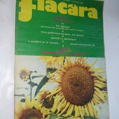 Revista FLACARA Nr.30/1973 Articol Ilie Nastase