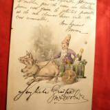 Felicitare - Pitic pe Careta trasa de 2 porci, sampanie 1914, circ. din Romania - Carte postala tematica, Circulata, Printata