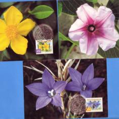 MAXIMA AUSTRALIA FLORI 1999 3 BUC., Asia