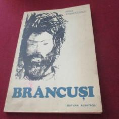 NINA STANCULESCU - BRANCUSI - Carte sculptura