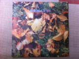 ION LUICAN ROMANTE disc vinyl lp muzica populara folclor electrecord EPE 02096