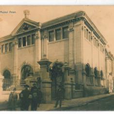 3131 - Dolj, CRAIOVA, Muzeul AMAN - old postcard - used - Carte Postala Oltenia 1904-1918, Circulata, Printata