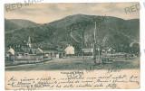3117 - L i t h o, Sibiu, SALISTE - old postcard - used - 1900