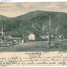 3117 - L i t h o, Sibiu, SALISTE - old postcard - used - 1900 - Carte Postala Transilvania pana la 1904, Circulata, Printata