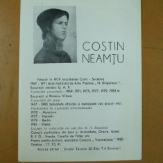 Costin Neamtu pictura  pliant prezentare