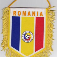 Fanion Federatia de Fotbal din ROMANIA (FRF)