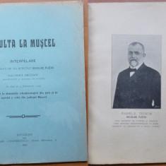 Deputat Nicolae Fleva, Oculta la Muscel, Interpelare in Camera, 1909 - Carte Editie princeps