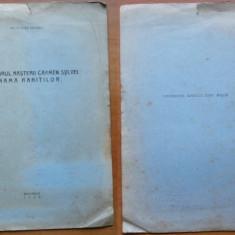 Centenarul nasterii lui Carmen Sylva , Mama Ranitilor , 1944 , Regim. 2 Vanatori