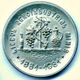 MEDALIE LICEUL AGROINDUSTRIAL MINIS 1881-1981 BRONZ ARGINTAT UNIFATA SUPERBA - Medalii Romania