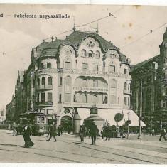 338 - Bihor, ORADEA, Market - old postcard - used - 1917 - Carte Postala Crisana 1904-1918, Circulata, Printata