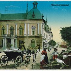 203 - Maramures, SIGHET, vanzatori de struguri, muscal - old postcard - unused - Carte Postala Maramures 1904-1918, Necirculata, Printata