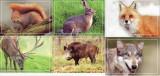 Fauna - Carti Postale din Moldova 2015