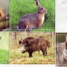 Fauna - Carti Postale din Moldova 2015 - Carte postala tematica, Necirculata, Printata