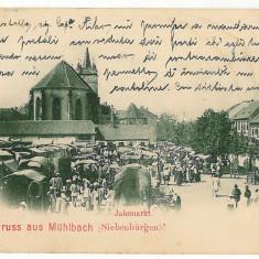2164 - Litho, Alba, SEBES ALBA - old postcard - used - 1899 - Carte Postala Transilvania pana la 1904, Circulata, Printata
