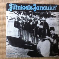 Formatia Tulnicele Iancului disc single Muzica Populara electrecord din Belis Calatele Risca, VINIL
