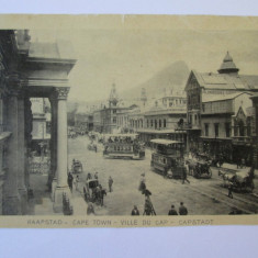 FOTO MODEL C.P. CAPE TOWN CU RECLAMA CACAO A.DRIESSEN-FUR.REG.MARIA ANII 1910/20 - Reclama Tiparita