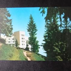 Aug15 - Vedere/ Carte postala - Sinaia - Carte Postala Banat dupa 1918, Circulata, Printata