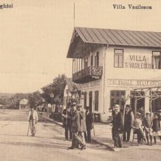 TECHIRGHIOL VILLA VASILESCU , MAGAZIN COLONIALE  DELICATESE, Necirculata, Printata