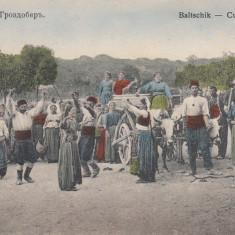 BALCIC, CULESUL VIILOR, EDITURA CONSTANTIN RACEF, BALCIC - Carte Postala Dobrogea dupa 1918, Necirculata, Printata