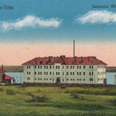 TECHIRGHIOL CARMEN SYLVA SANATORIUL MILITAR SI GARA CIRCULATA JUL.''930 - Carte Postala Dobrogea dupa 1918, Printata