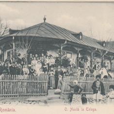 SALUTARI DIN ROMANIA, O NUNTA LA TELEGA (JUD. PRAHOVA), CLASICA - Carte Postala Muntenia pana la 1904, Necirculata, Printata