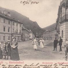 HERCULANE, CIRCULATA JUL.''904 - Carte Postala Banat pana la 1904, Printata, Baile Herculane