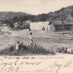 VEDERE GENERALA DE LA TELEGA (DISTRICT.PH) FOTO. FR.DUSCHEK, CIRC. APR.''902 - Carte Postala Muntenia pana la 1904, Circulata, Printata