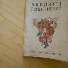 V. SONEA--ARBUSTII FRUCTIFERI - 1955 - Carti Agronomie