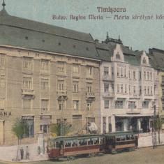 TIMISOARA, BULEV. REGINA MARIA CU PALATUL (BANCA )TIMISIANA, TRAMVAI - Carte Postala Banat dupa 1918, Necirculata, Printata