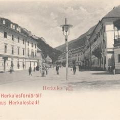 BANAT, SALUTARI DIN BAILE HERCULANE, PIATA HERCULANE - Carte Postala Banat pana la 1904, Necirculata, Printata
