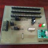 Programator PIC Pickit2 clona 3,3 – 5V cu soclu on board