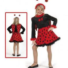 Costum Pentru Serbare Buburuza Cu Antene 116 Cm - Costum Halloween