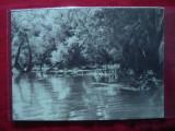 Ilustrata - Balta Brailei , interbelica, Necirculata, Fotografie
