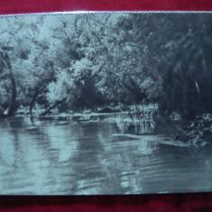 Ilustrata - Balta Brailei, interbelica - Carte Postala Moldova dupa 1918, Necirculata, Fotografie