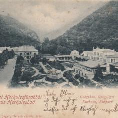 HERCULANE, SALUTARI DIN BAILE HERCULANE, CLASICA, CIRCULATA JUL. 1901 - Carte Postala Banat pana la 1904, Printata