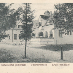 SIBIU, RESTAURANTUL DUMBRAVEI - Carte Postala Transilvania dupa 1918, Necirculata, Printata