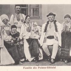 SIBIU PORT POPULAR, FAMILIE DIN POIANA - SIBIULUI - Carte Postala Transilvania 1904-1918, Necirculata, Printata