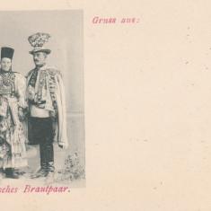 SIBIU, SASI IN COSTUME TRADITIONALE, SALUTARI DIN .. - Carte Postala Transilvania pana la 1904, Necirculata, Printata