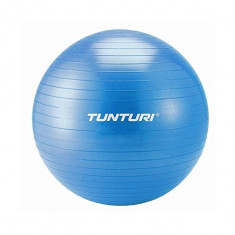 Minge gimnastica 65cm Tunturi - Minge Fitness